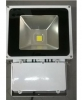 Floodlight, LED 80W for Coastal / Marine