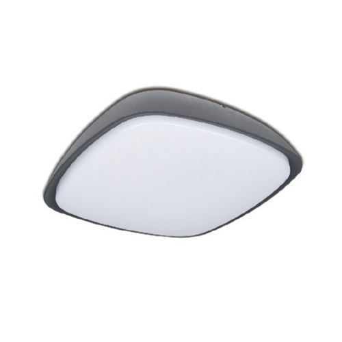 20W - LED Wall / Ceiling Light